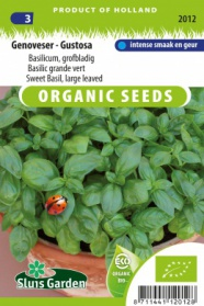Sweet Basil, large leaved Genoveser - Gustosa