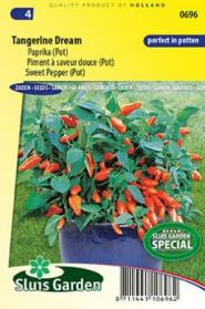Piment à saveur douce Tangerina Dream (pot)