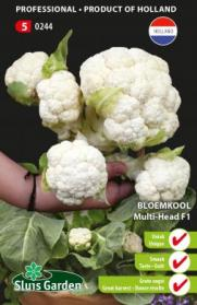 "Cauliflower ""Multi-Head F1"""