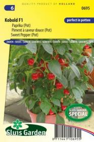 Sweet pepper Kobold F1 (pot)