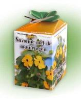 Greengift Black-eyed Susan