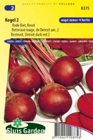 Beetroot, Red Gardenbeet Detroit dark red 2