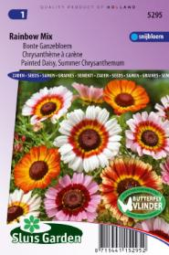 Margriet Rainbow Mixed (Bonte Ganzebloem)