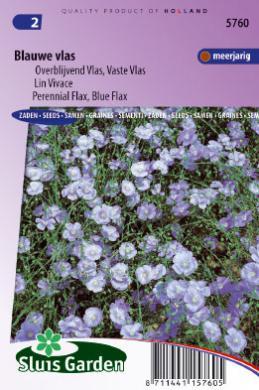 Lin Vivace Bleu Graines De Fleurs Vivaces Producten Sluis Garden