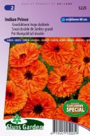 Calendula (Pot Marigold) Indian Prince tall double