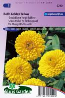 Calendula (Pot Marigold) Ball's Golden Yellow tall double